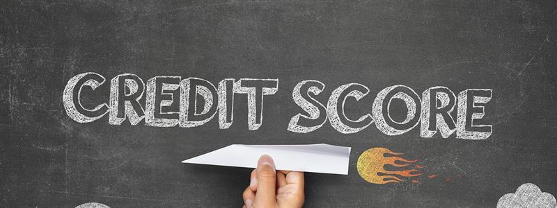 Understanding Alternative Credit Scoring